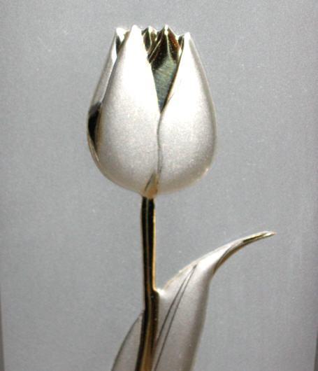 Srebrny tulipan